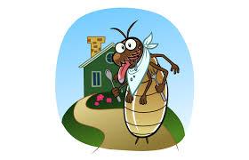 Q&A: Pest Inspections